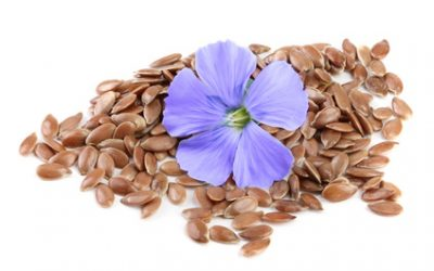 flax seeds with flower isolated on white background.